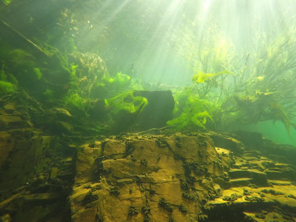 Mergulho Rifaina Água Transparente